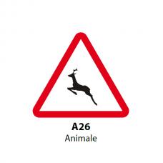 Animale (sălbatice) — Indicator rutier
