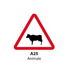 Animale — Indicator rutier