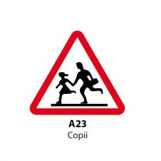 Copii — Indicator rutier